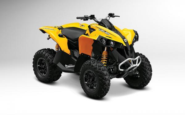 Renegade 800R STD